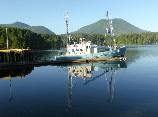Fishing boats at rest Ucluelet, BC