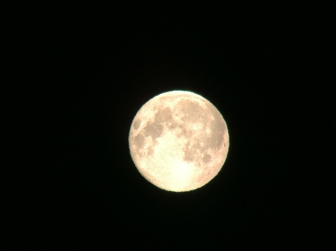 Super Moon Corner Brook, Newfoundland and Labrador Canada