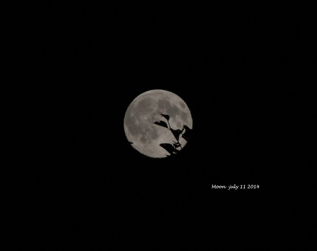 full moon july 2014