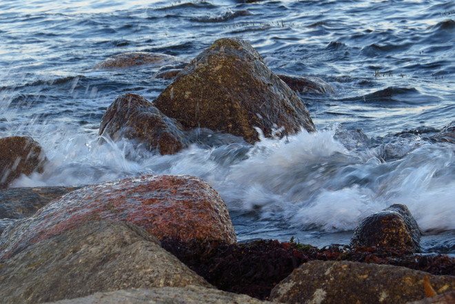 Intertidal Rocks & Feisty Waves East Chester, NS