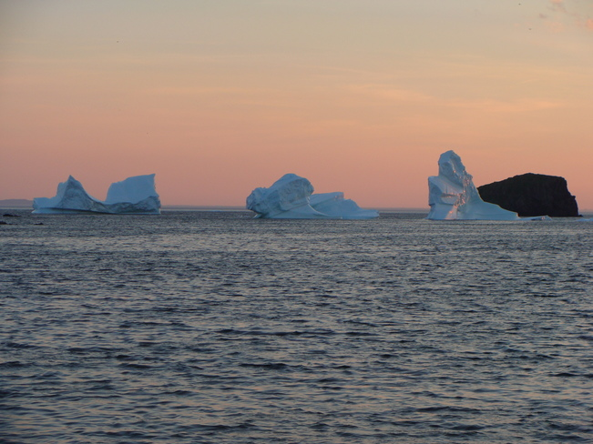 Triptych of icebergs! Back Harbour, Twillingate, NL