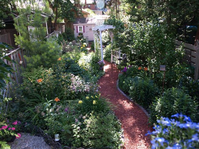 Garden thrives despite ice storm and late-onset Spring