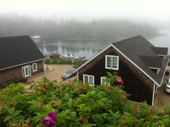 Another Foggy Morn Deep Cove Chester, Nova Scotia Canada