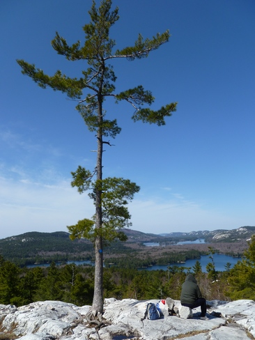 beautiful view of the lake Killarney Provincial Park, Killarney, ON