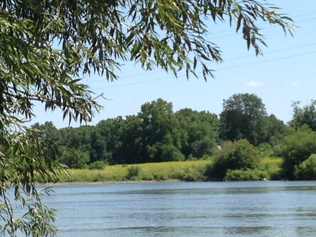 Grand river 1446 2nd Line, Hagersville, ON N0A 1H0, Canada