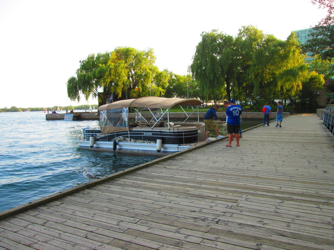 Harbourfront Toronto, ON