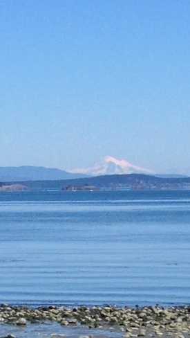 MOUNT BAKER at Island View Beac East Saanich 2, British Columbia Canada