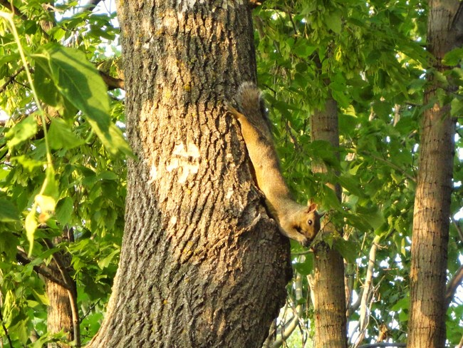 Just hanging around! Arborg, MB