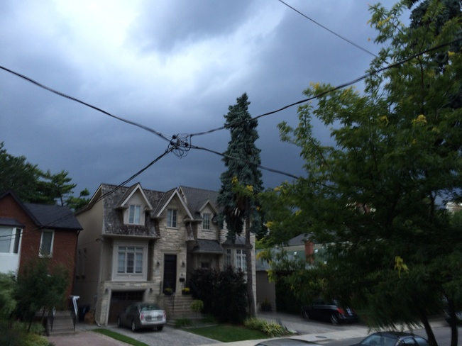 dark skies Mount Pleasant East, Ontario Canada