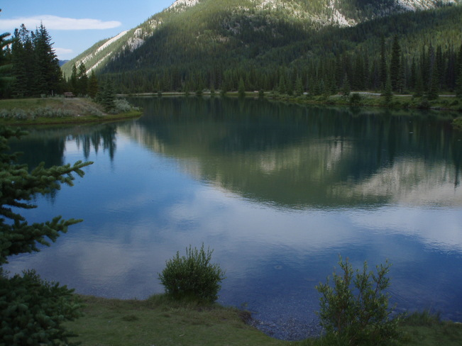 ForgetMeNot Pond in K-Country Bragg Creek, AB