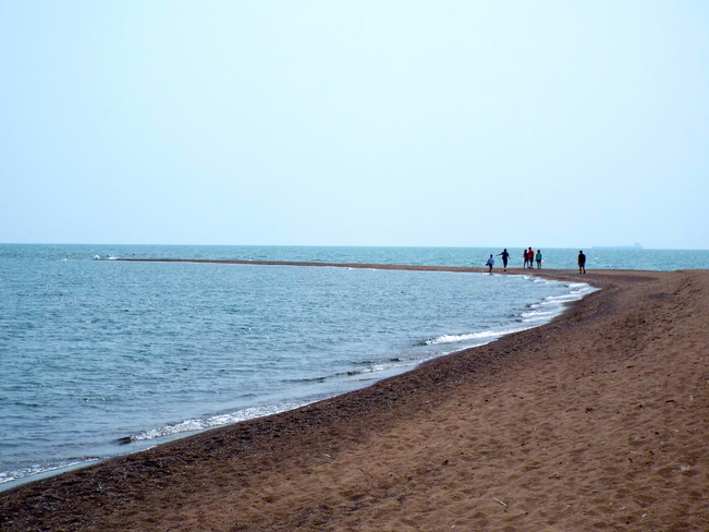 """The Point"" Point Pelee National Park, Leamington, ON"