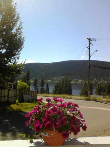 Beautiful Sunny, B.C. Weather! :) Williams Lake, BC