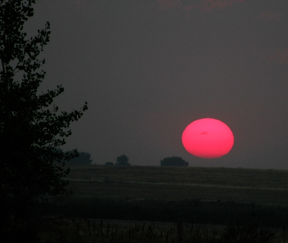 big red, a hazy sunset Brooks, AB