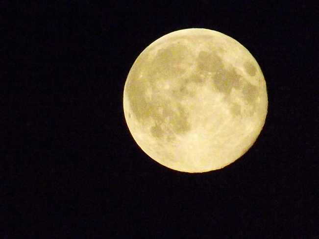 SUPER MOON August 10 2014 Edmonton, AB