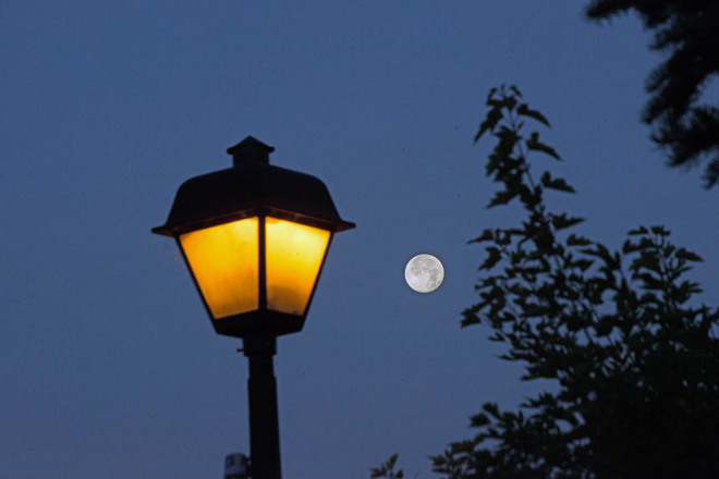 Supermoon and Lamplight
