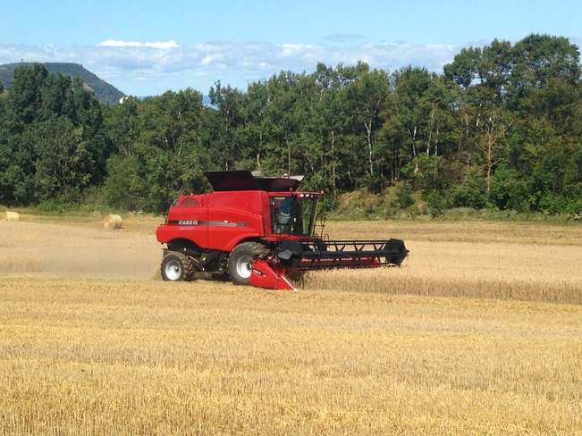 Combining in Blomidon 2037-2331 Pereau Road, Canning, NS B0P 1H0, Canada