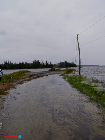 Rain and high tide do not mix! 14 Public Wharf Road, Arcadia, NS B0W 1B0, Canada