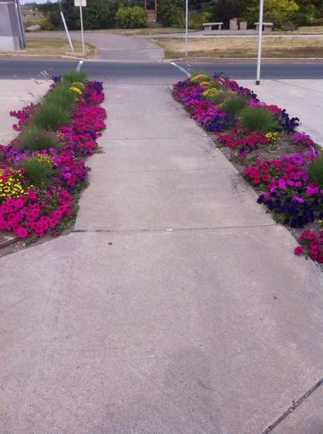 beauty walkway Brandon, Manitoba Canada