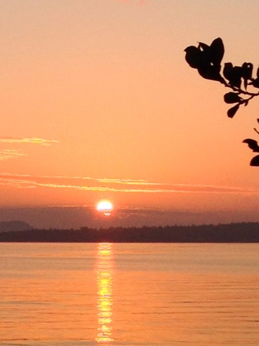 SUNRISE Sidney, British Columbia Canada