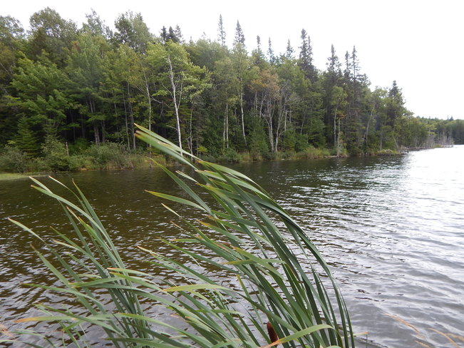 Macabe lake McKendrick, NB