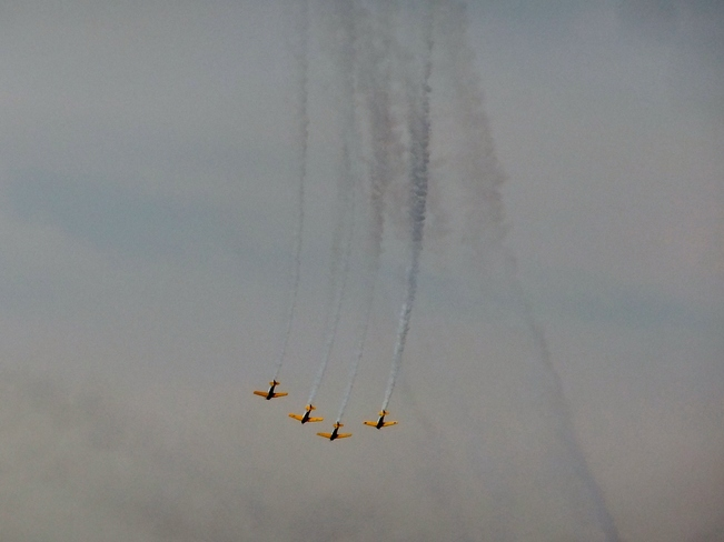 Canadian Havards Aeros fly in the show Toronto, ON