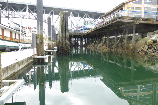 Low tide at Granville Island