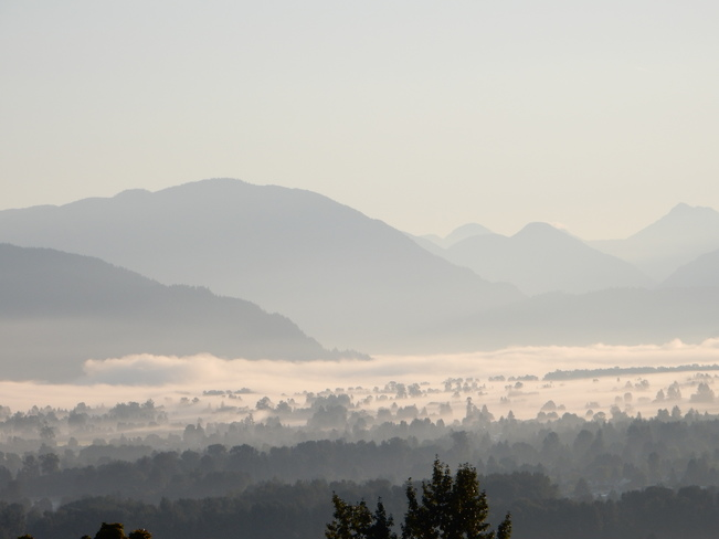 Fall fog in the valley Chilliwack, BC