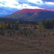 Pink mountain BC
