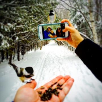 """""""Chickadee Selfie"""""""