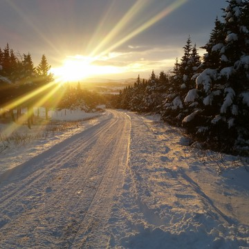 snowy sunset in Cappahaden NL.