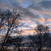 Morning Sky of Chop-suey