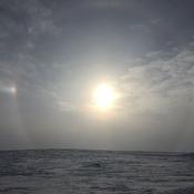 Tundra Sun Dog