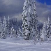Sun Peaks Nordic