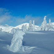 Sun Peaks alpine.