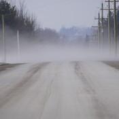 Foggy Day in Phelpston
