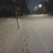 une nuit l'hiver