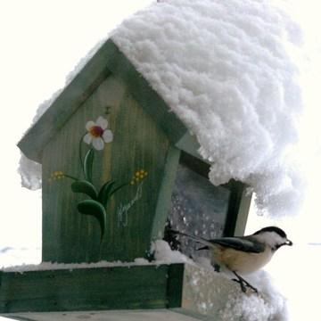 Souvenirs d'un hiver neigeux.