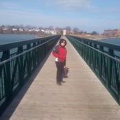 Henley pond