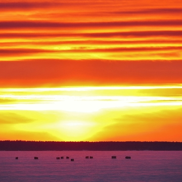 Hot sunset over the ice-fishing huts.