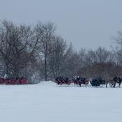 Promenade en carrioles à chevaux sous la neige