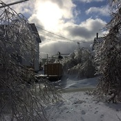 After the ice storm
