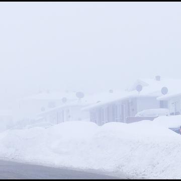 Foggy mild day, Elliot Lake.