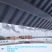 Ice Crullers