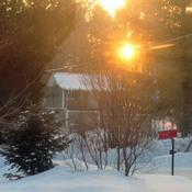 Soleil aux couleurs chaudes dans le froid
