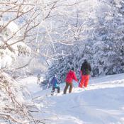 Ski magnifique