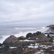 photos added & taken by Bridget Leonard -Traverse , Ferndale. Placentia , N.L.