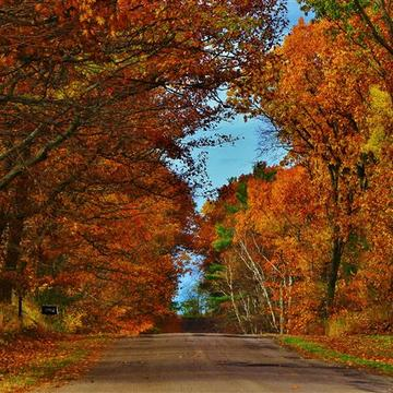 AUTUMN......IN COTTAGE COUNTRY....