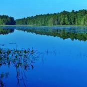 BASS LAKE...