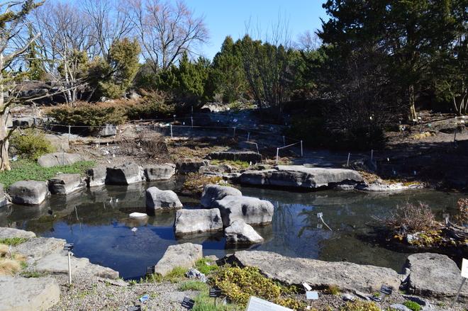Photos m t om dia for Jardin botanique montreal 2016