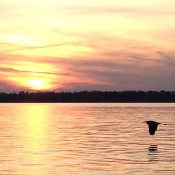 sunset at Rustic Bay on Sturgeon Lake